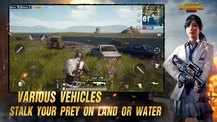Playerunknown's Battlegrounds PUBG Mobile